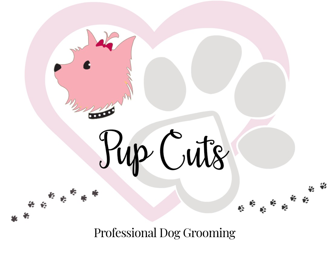 dog groomers morrisville pa